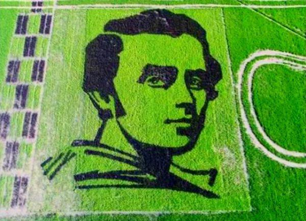 Портрет Кобзаря на рисовому полі