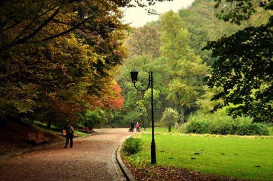 У Садового не можуть знайти охочих очолити Стрийський парк