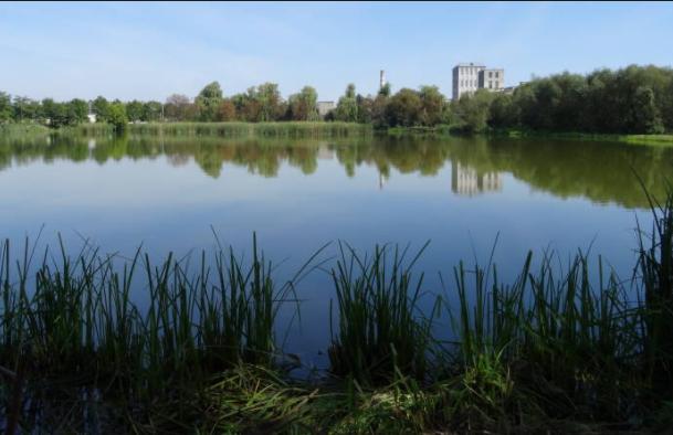 Буське управління водного господарства закликає краян не забруднювати та не засмічувати водні об'єкти