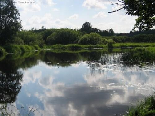 На Бущині виставили ставок на земельні торги