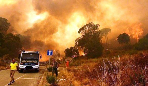 На Сицилії викрито «пожежну мафію»