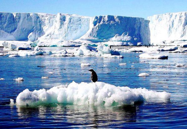 Антарктида «сидить» на вулкановій бочці!