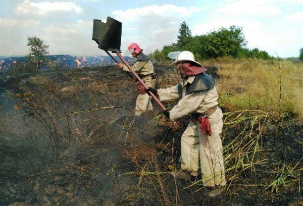 Маємо найвищий рівень пожежної небезпеки