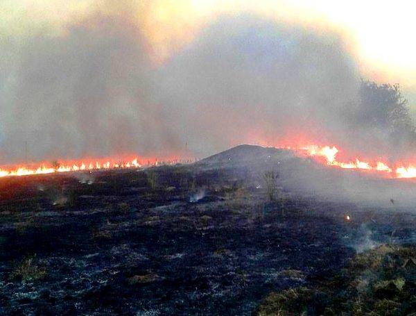 Бойовики застосовують метод «випаленої землі»