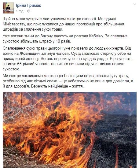 Штраф за спалювання сухостою можуть збільшити у 10 разів, – ЛОДА