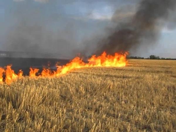 Спалювання стерні може призводить до пожеж
