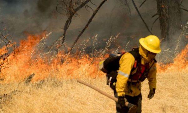 У Каліфорнії шаленіють лісові пожежі