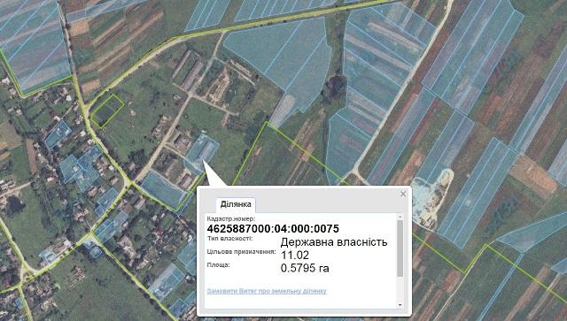 Синютка продав землю для взуттєвого цеху за 200 тисяч